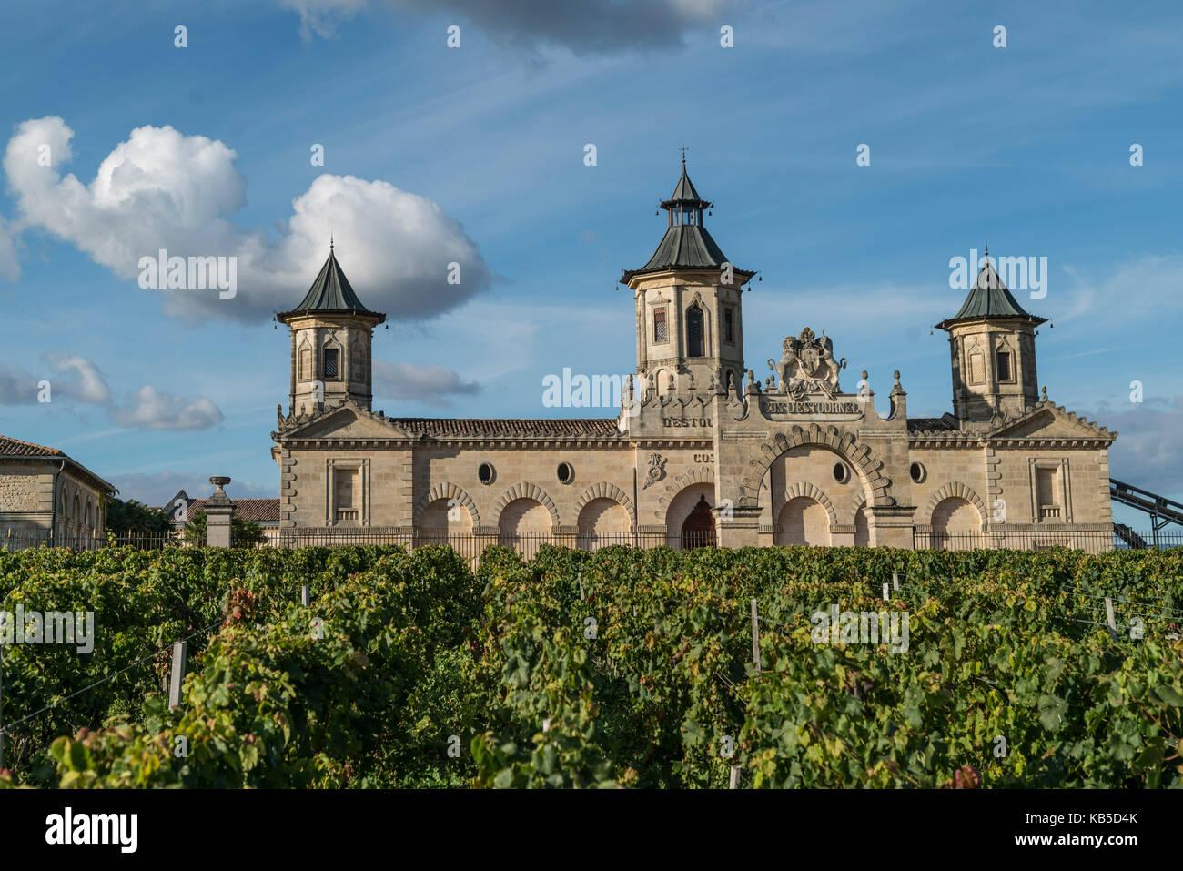 Cos d Estournel, vineyards in Medoc, Bordeaux, Gironde, Aquitaine, France, Europe, - Stock Image