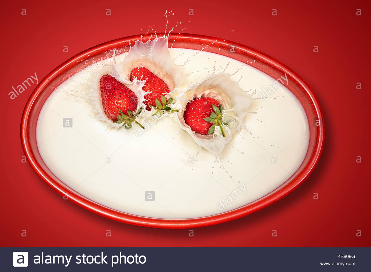 Fresh Strawberries splashing in a colored bowl of  white milk against a red background and viewed directly from - Stock Image