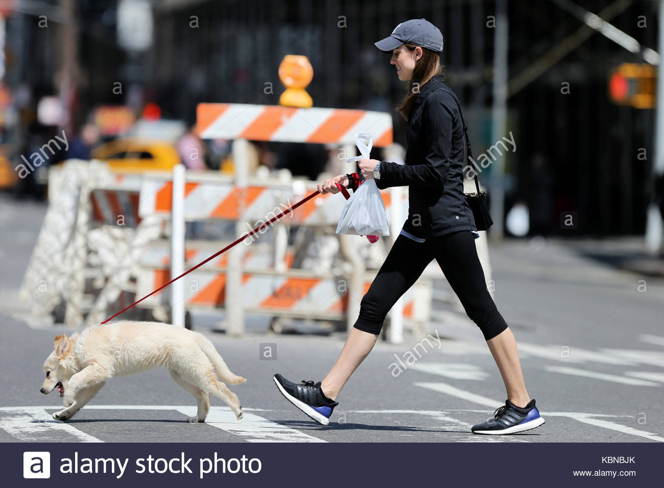 Actress Allison Williams Walks To Petco With Her Golden Retriever Mix Moxie On 27th Birthday In New York City