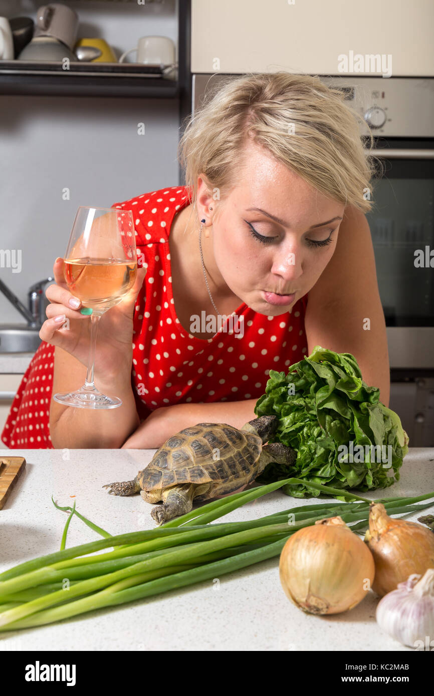 Female is surprised on tortoise who is eating salad - Stock Image