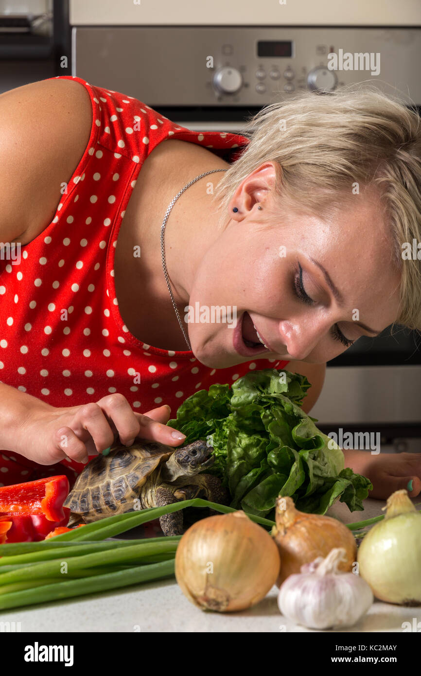 Girl leaning down and petting tortoise on its head next to big roman salad - Stock Image
