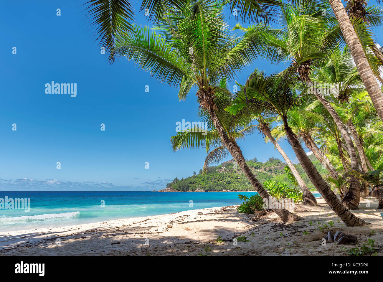 Landscape of paradise tropical island. Holiday and vacation concept. - Stock Image