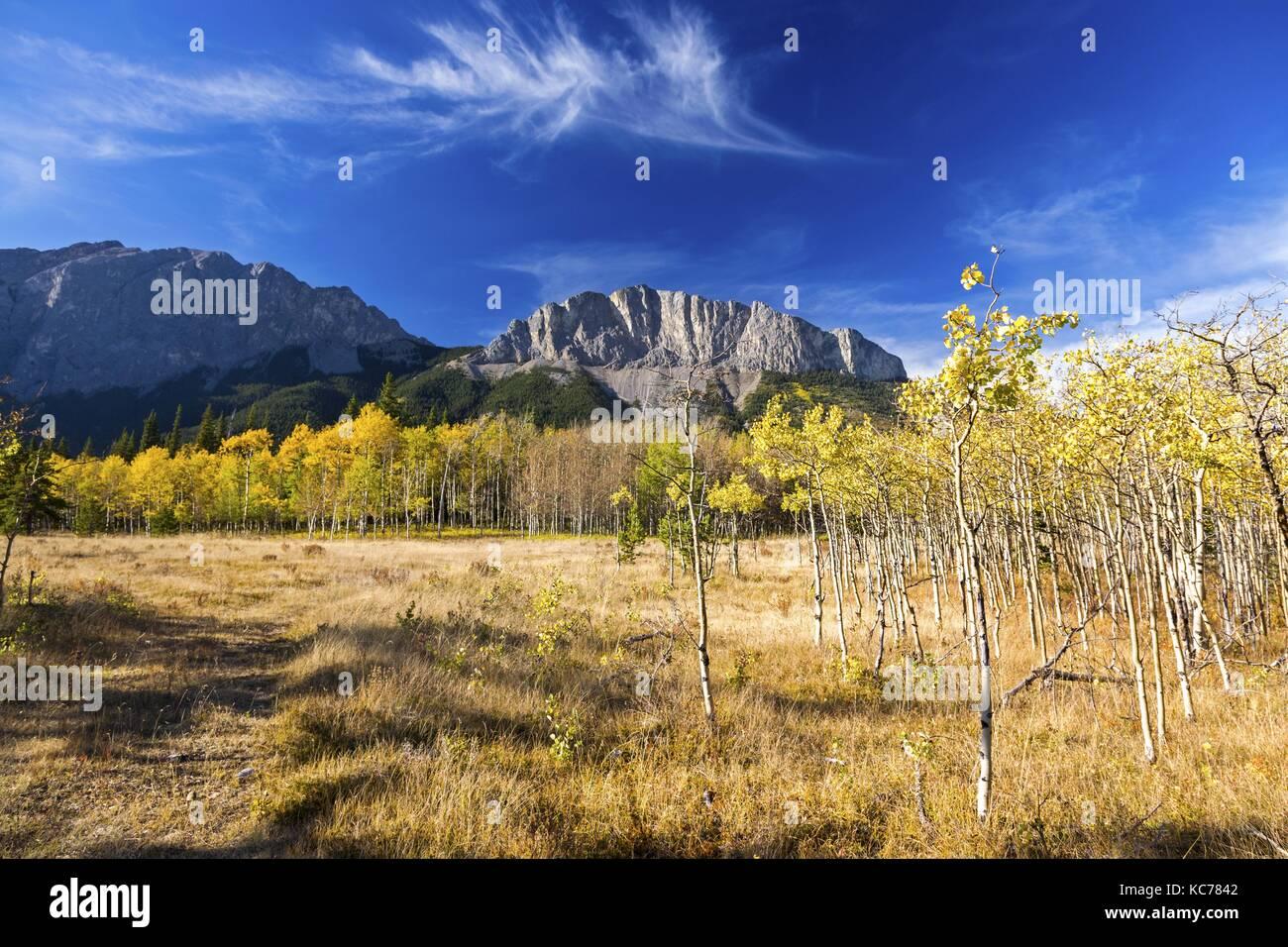 distant-yamnuska-mountain-mount-john-lau