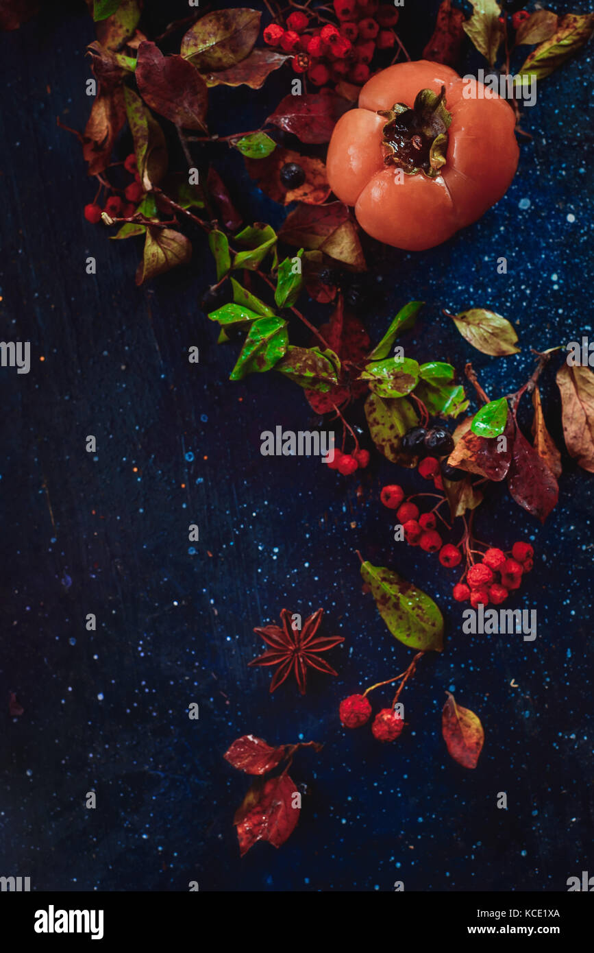 Ripe persimmons on a dark wooden background with autumn leaves, berries and cinnamon. Flat lay with copy space. - Stock Image