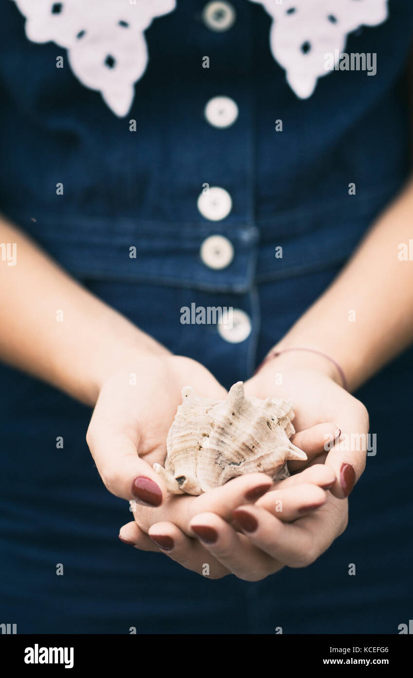 Hands of a girl holding a sea shell - Stock Image