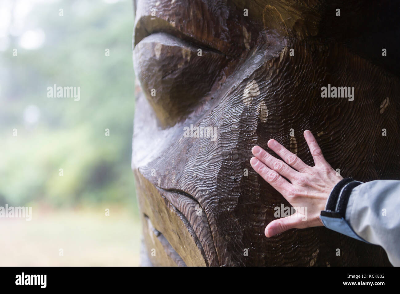 A wet memorial pole reveals its textural layers to a visitor at Friendly Cove,  Yuquot, West Coast Vancouver Island, - Stock Image