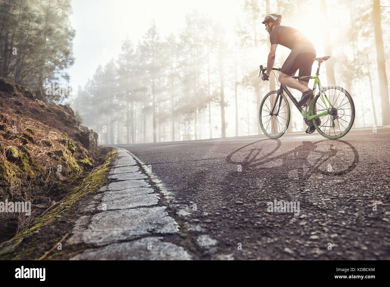 Cyclist on road in a foggy forest - Stock Image