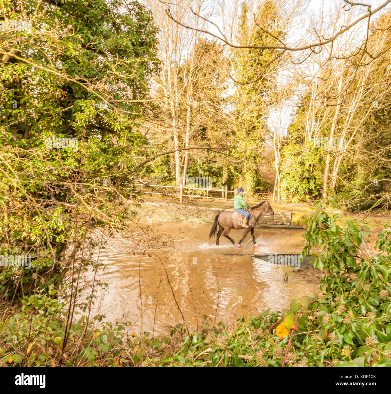 Girl on horse walking through Ford in Rufford Park Nottinghamshire England - Stock Image