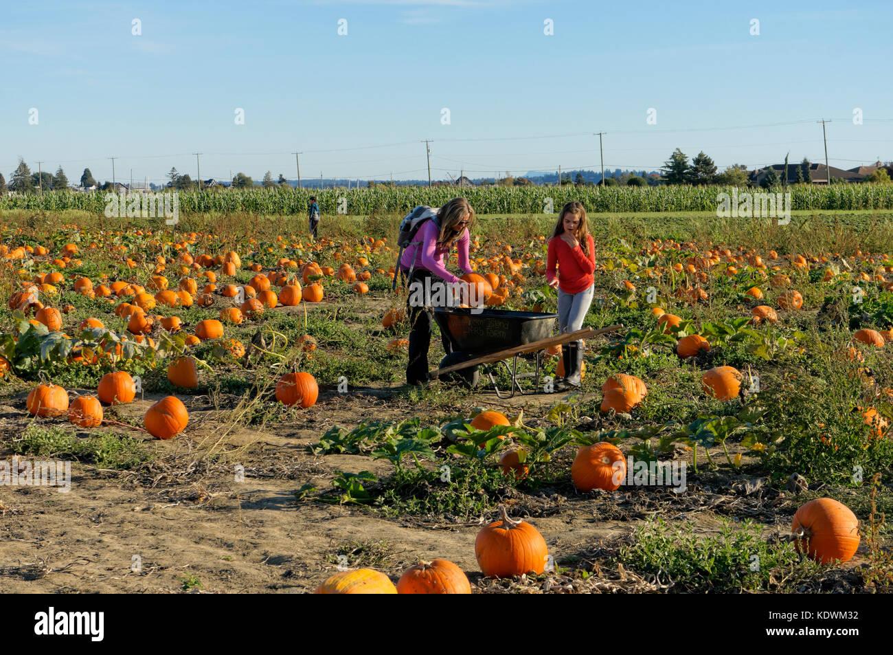 mother-an-daughter-placing-pumpkins-in-a-wheelbarrow-at-westham-island-KDWM32.jpg