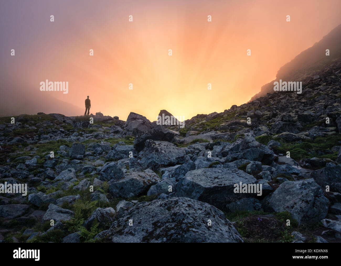 Man standing front of sunlight at summer evening in mountain Lofoten Island - Stock Image