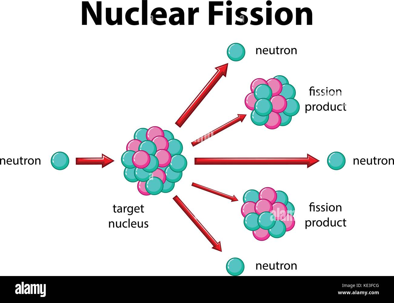 diagram showing nuclear fission illustration stock vector art Nuclear Fission of Uranium 235 diagram showing nuclear fission illustration