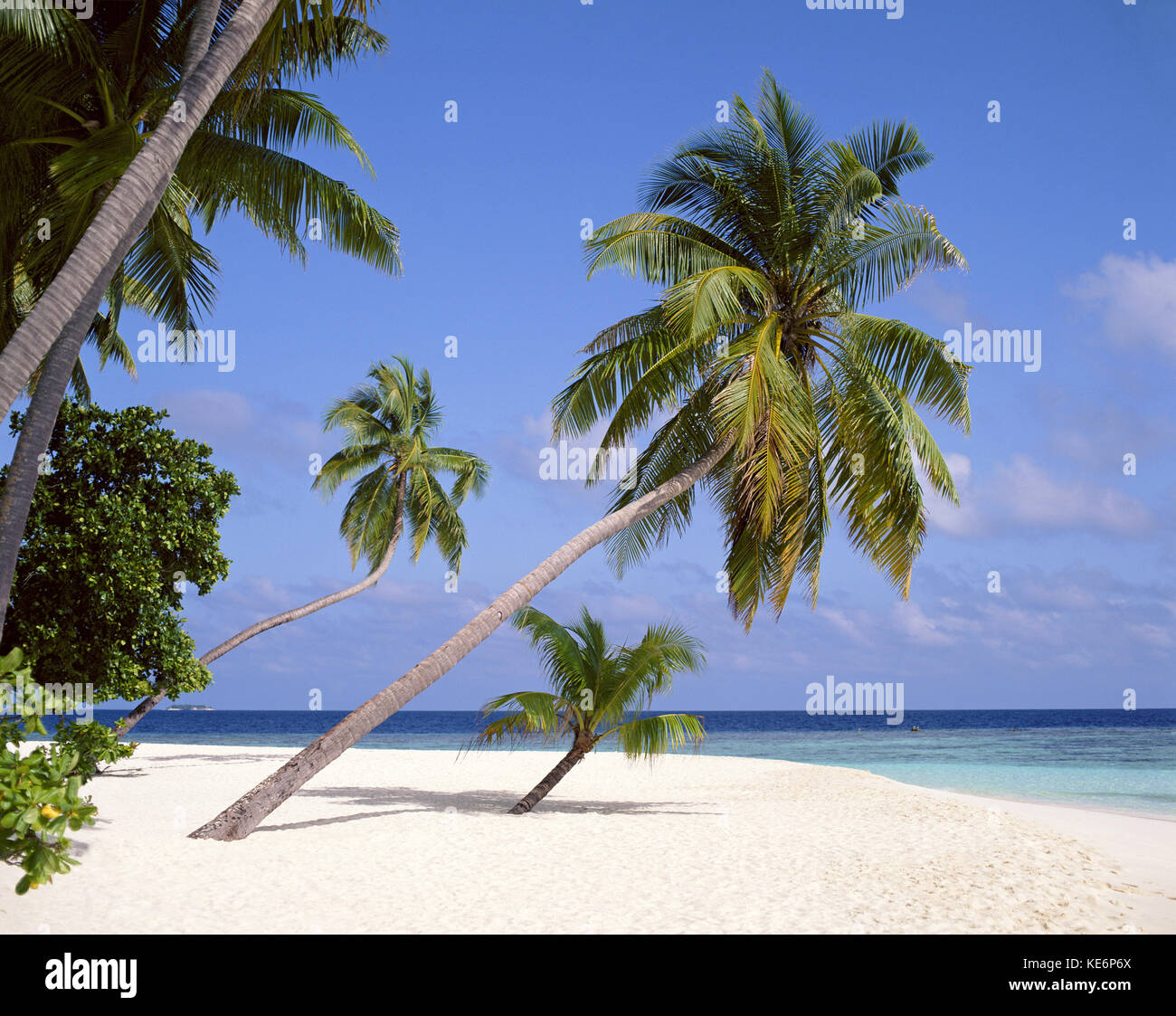 Tropical beach, Kuda Bandos Island, Kaafu Atoll, Republic of Maldives - Stock Image