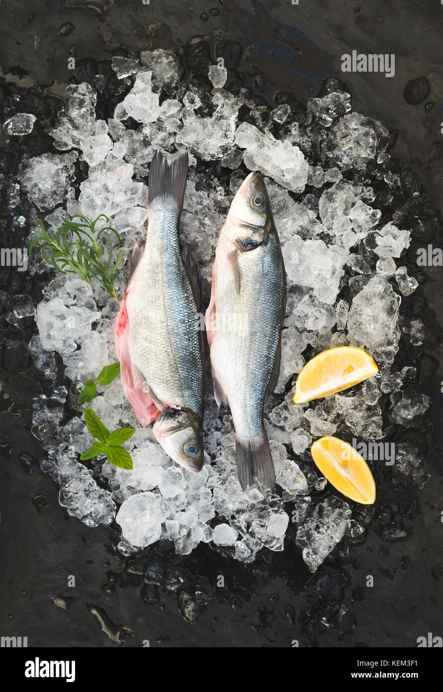 Raw seabass with lemon and rosemary on chipped ice over dark stone backdrop, top view - Stock Image