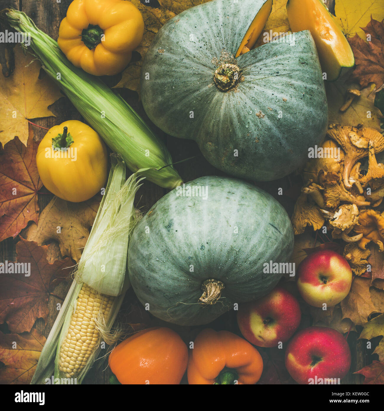 Fall colorful vegetables assortment over wooden table background, square crop - Stock Image