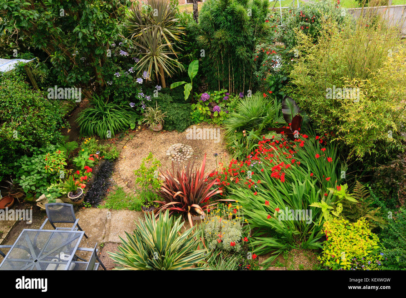 Overhead aerial view of a small exotic garden in Plymouth, Devon, UK, with bananas, palms, bamboos, cordylines and Stock Photo
