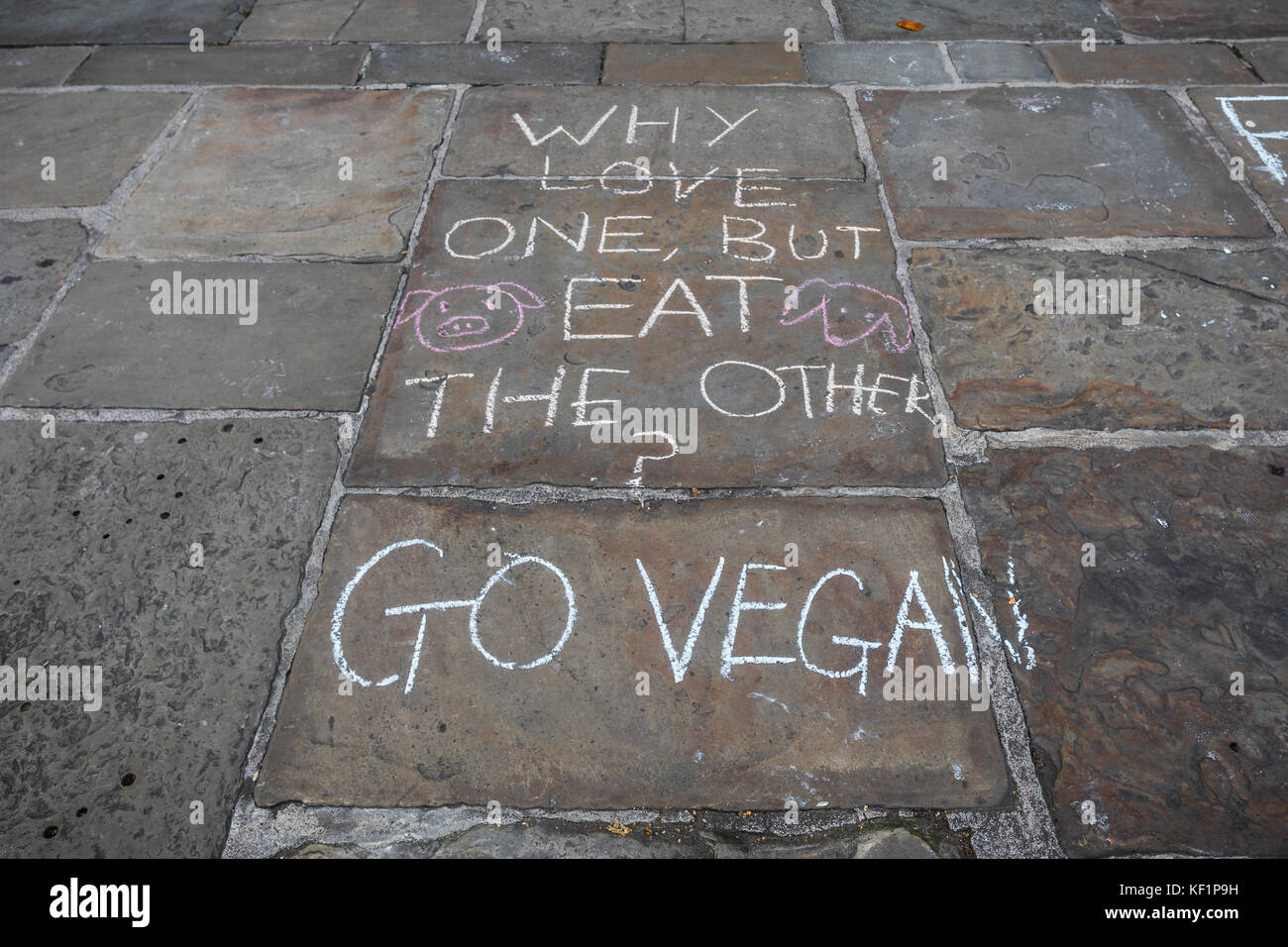 Go vegan graffiti - Stock Image