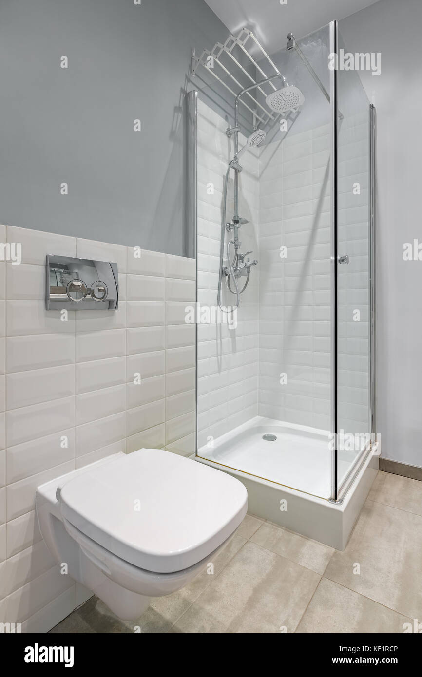 Gray and white bathroom with toilet, shower and modern brick tiles ...
