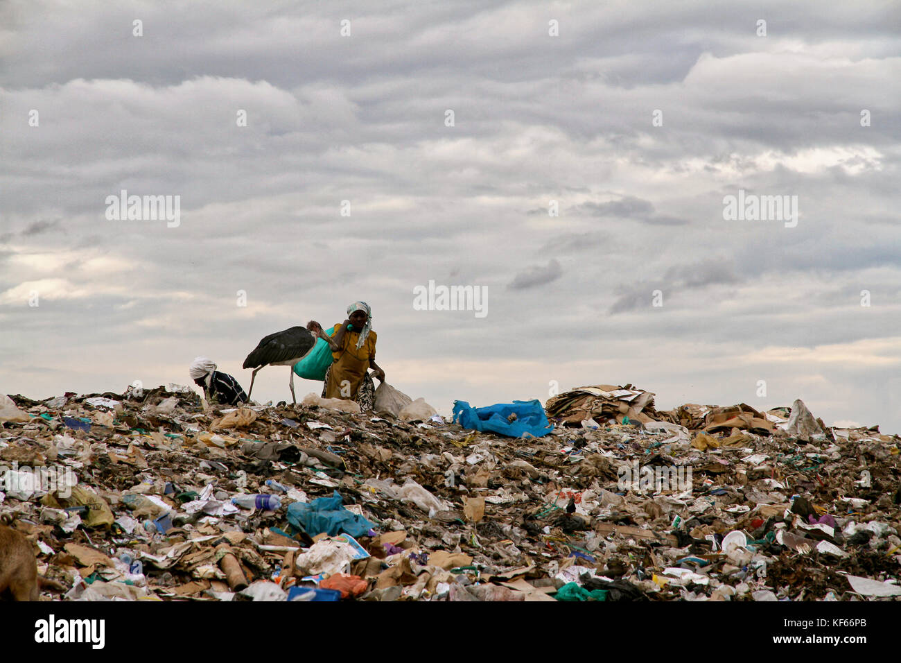 Living in the Kenya Slum Aerias - Woman collecting materials on the biggest dump site, Dandora Dumpsite, Mairobi - Stock Image
