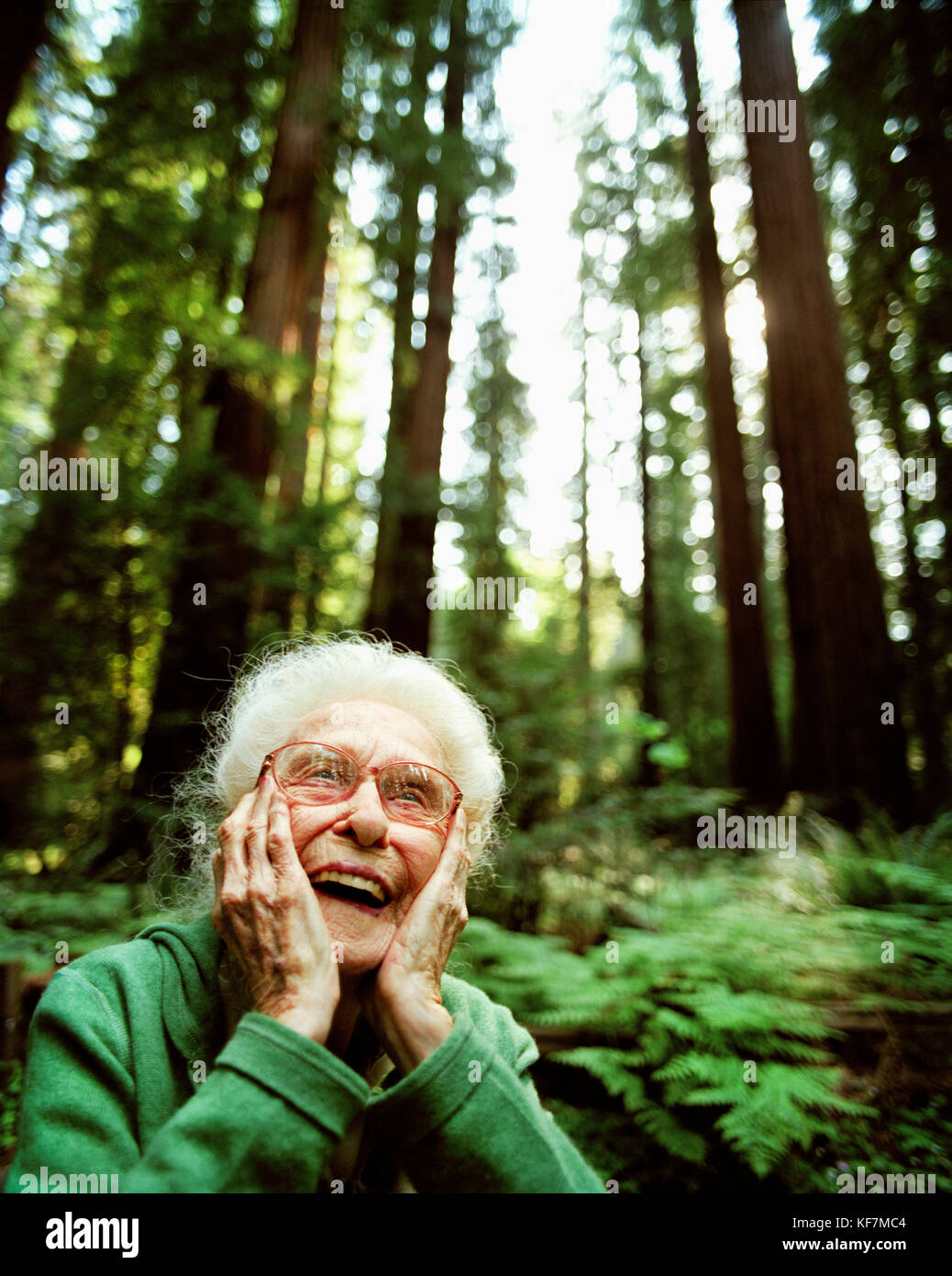 USA, California, Eureka, 103 year old woman laughing in the redwoods in Northern California - Stock Image