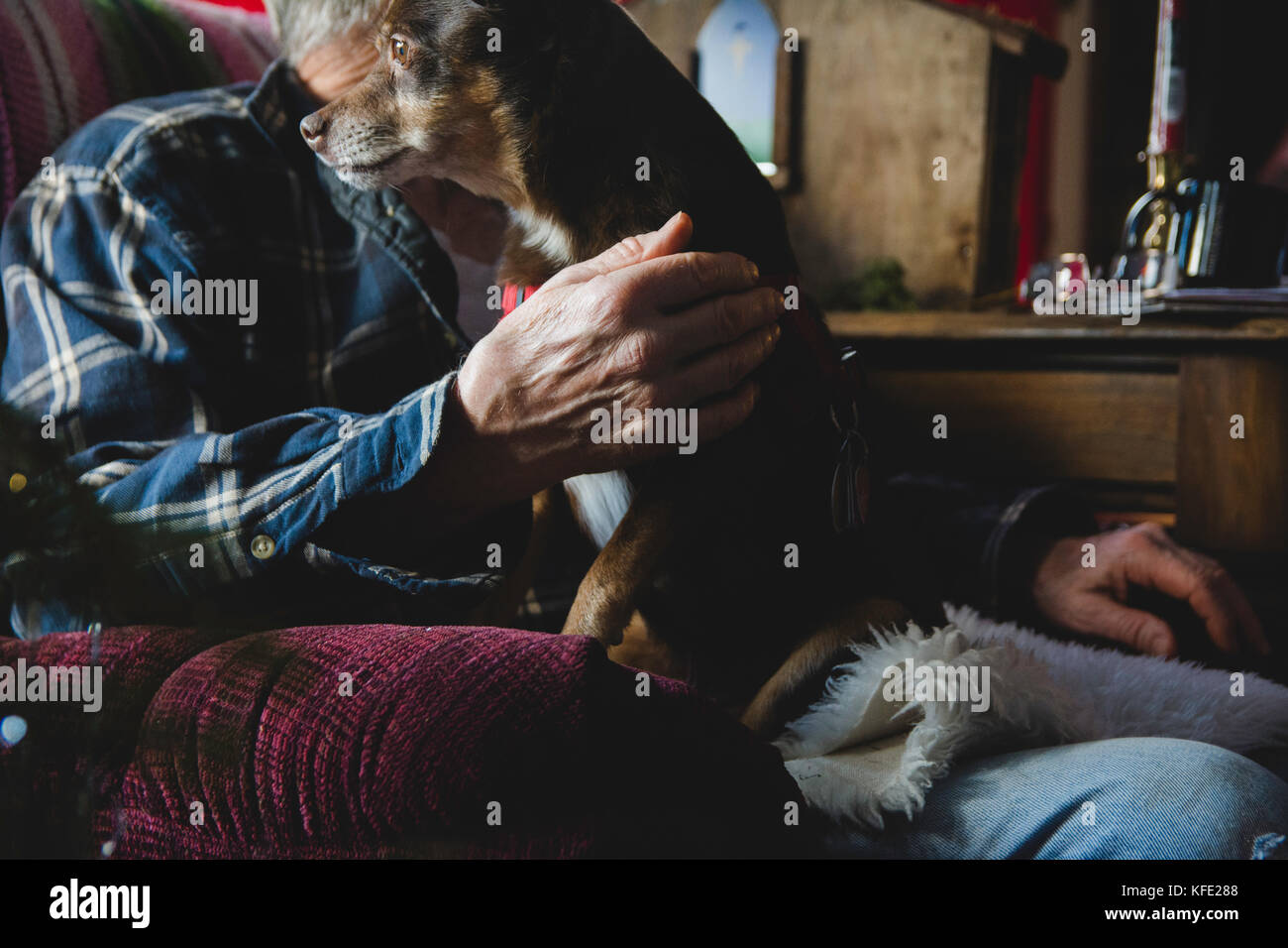 elderly man with pet dog in a chair - Stock Image