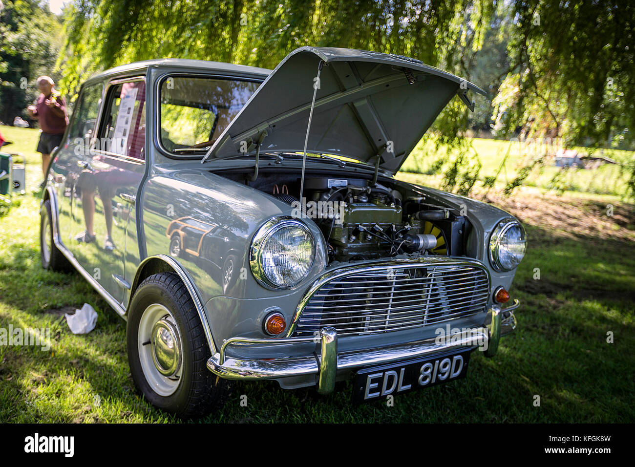 The Mini is a small economy car produced by the English based British Motor Corporation (BMC) and its successors - Stock Image