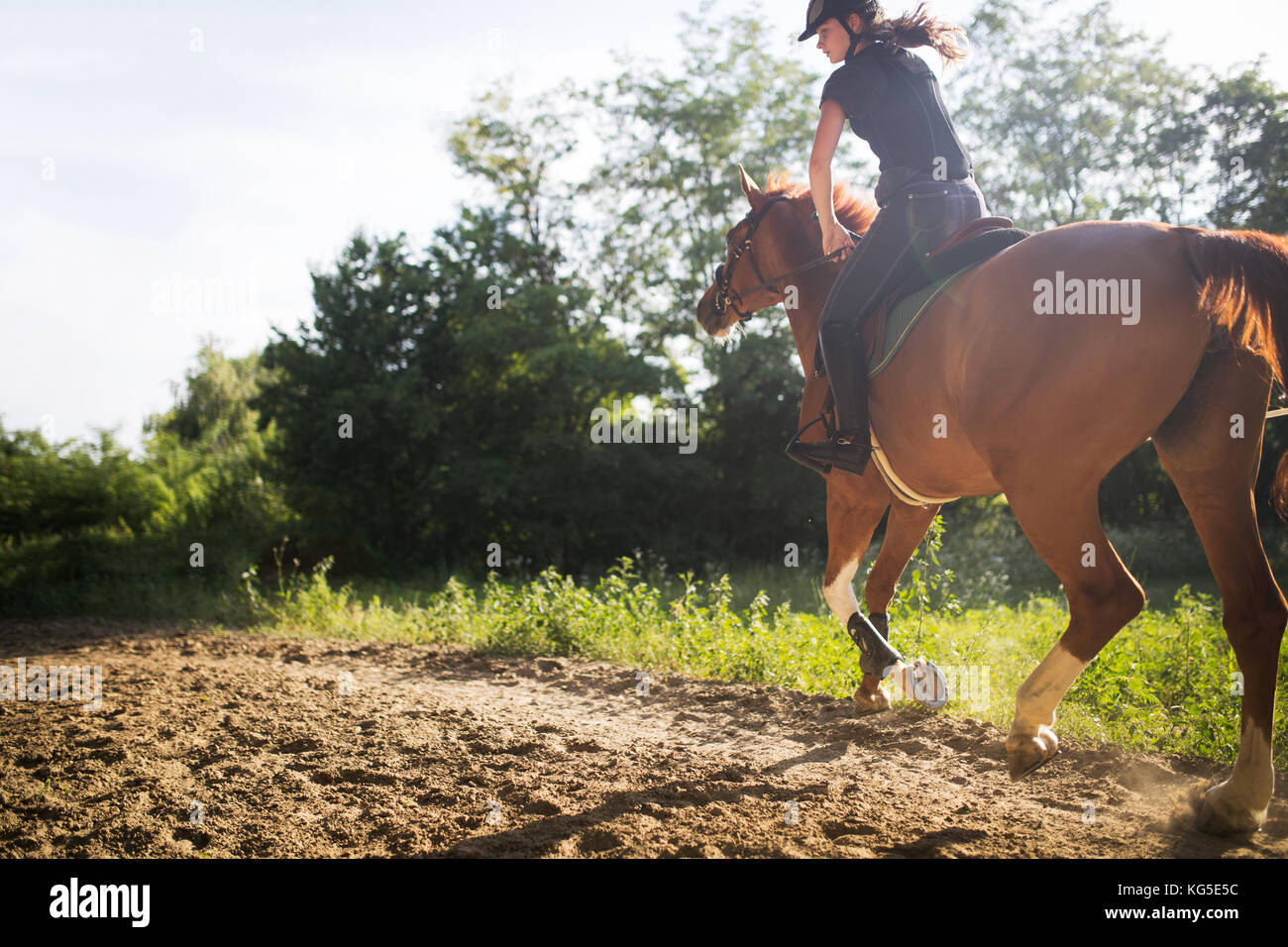 Portrait of young woman riding horse in countryside - Stock Image