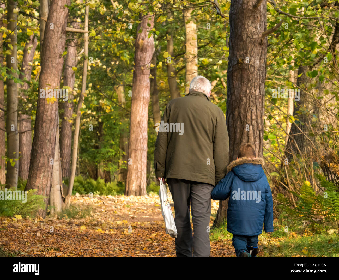 a-grandfather-holding-hand-of-young-gran