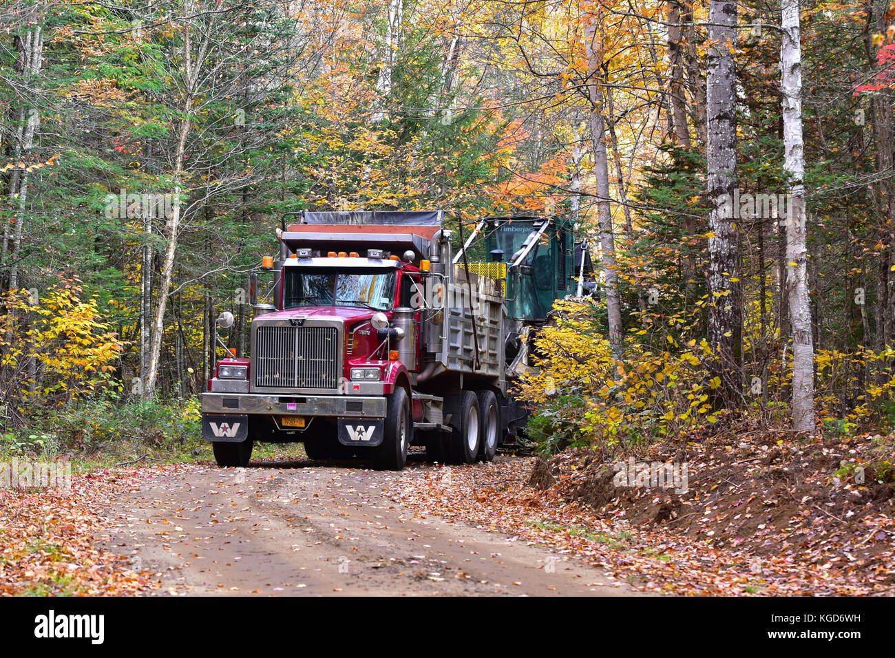 western-star-dump-truck-hauling-a-log-skidder-on-a-logging-road-through-KGD6WH.jpg