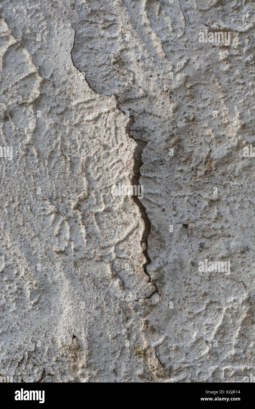 Old exterior wall paint decaying and cracking - metaphor for 'seen better times'. - Stock Image