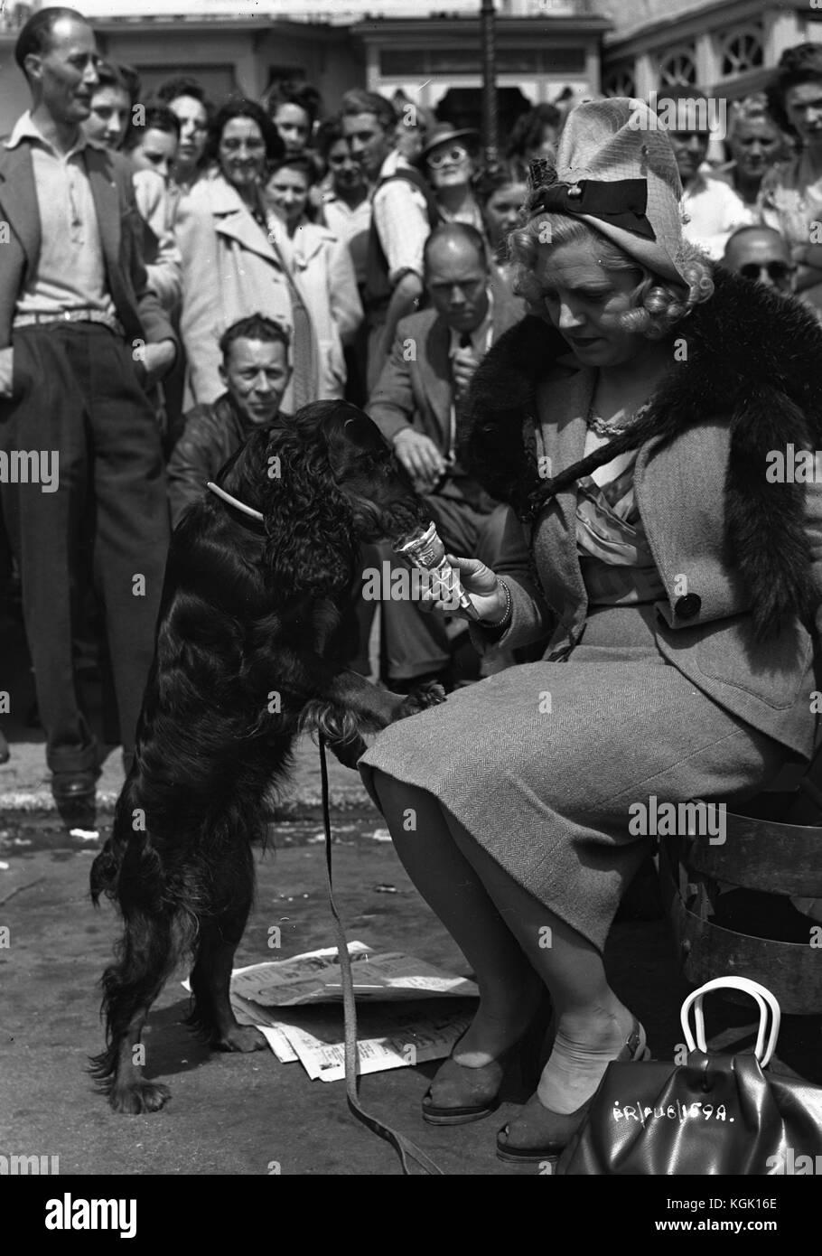 Rhoda Griffis,Joanne Whalley Sex fotos Vicki Davis,Bill Travers (1922?994)