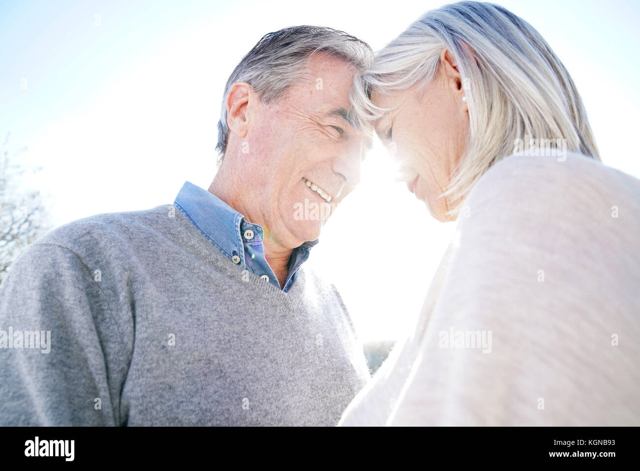 Portrait of senior couple embracing each other - Stock Image