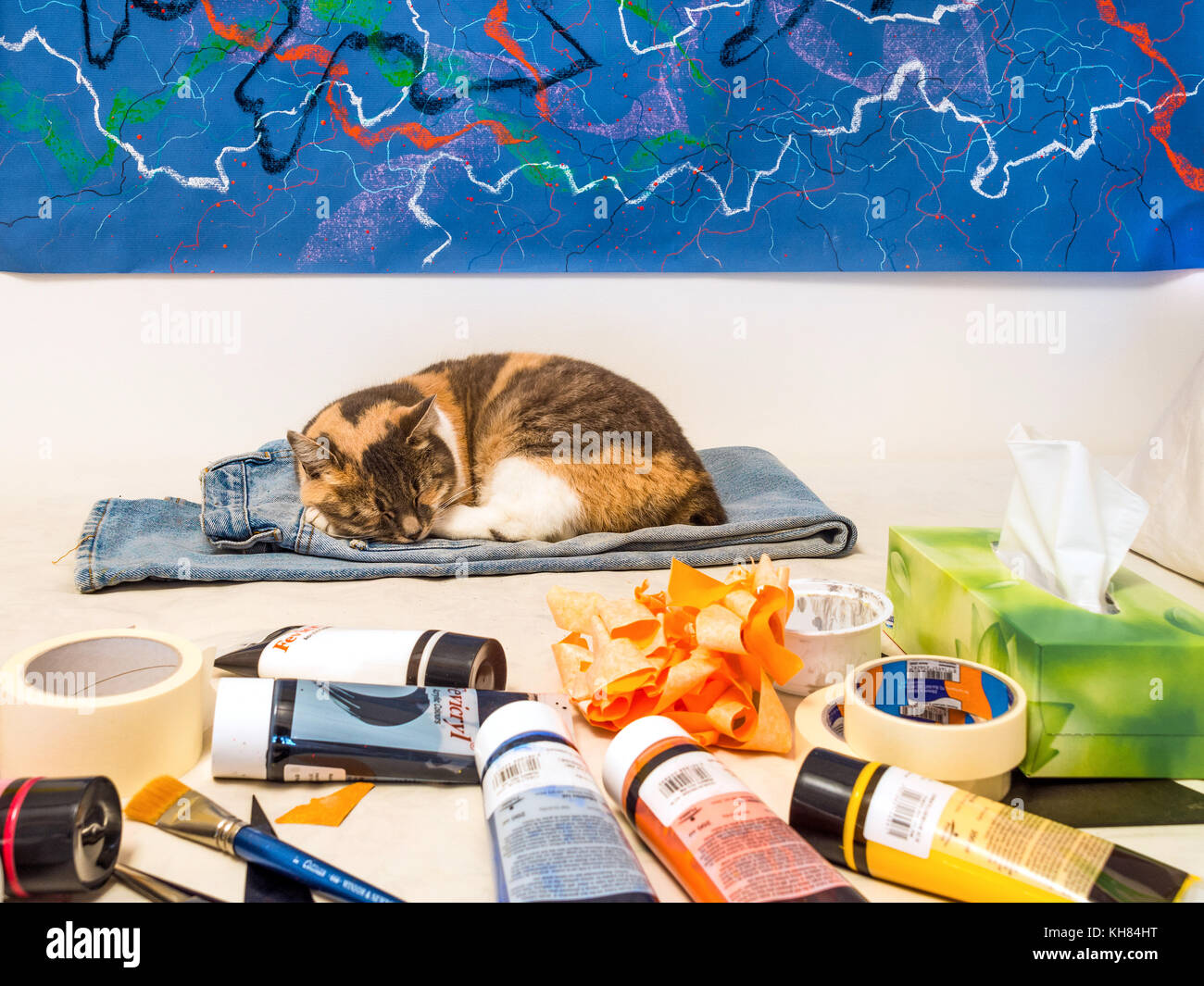 Sleeping cat in artist's studio - France. - Stock Image