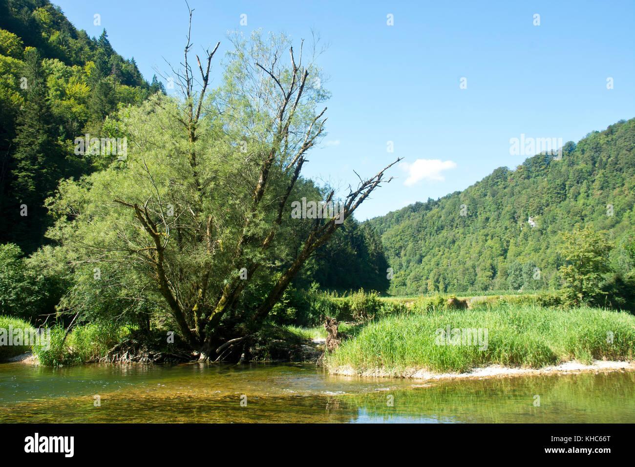 unspoilt swiss river doubs *** Local Caption *** switzerland, jura, soubey, clos du doubs, valley, doubs, river, - Stock Image