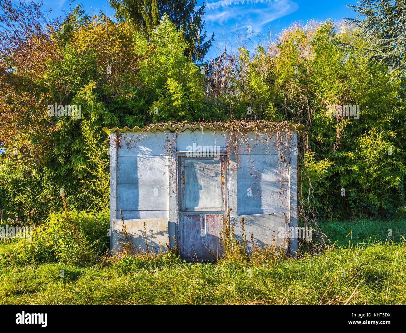 Tumbledown garden shed - France. - Stock Image