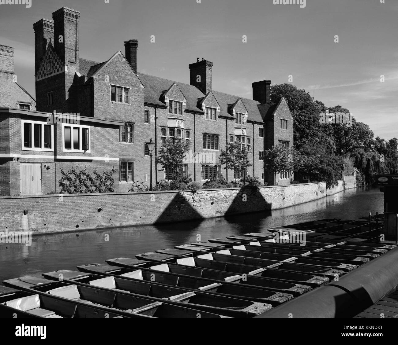 Punts moored on the River Cam opposite Magdalene College Cambridge - Stock Image
