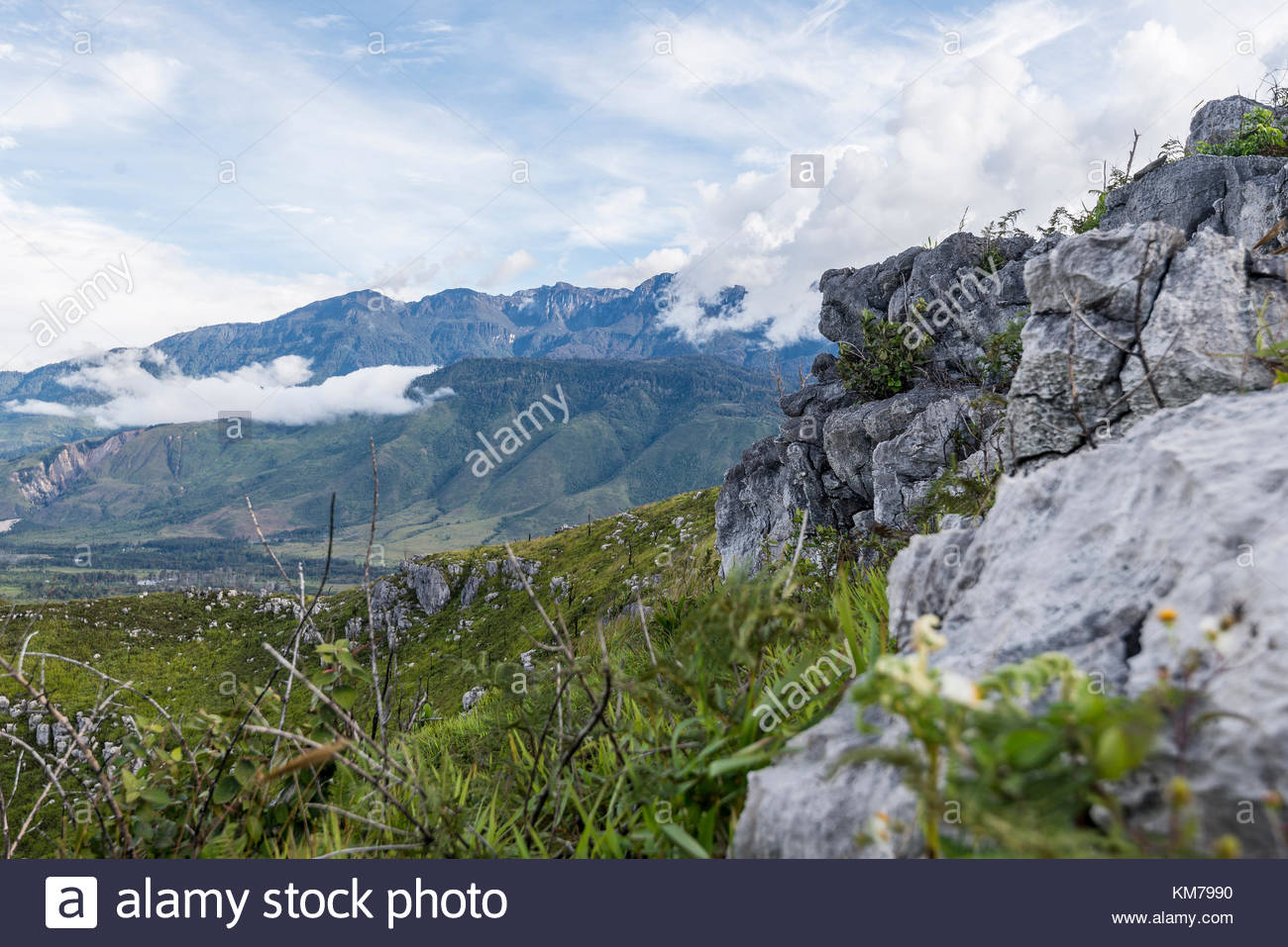Hiking the hills around Wamena, Western Papua - Stock Image