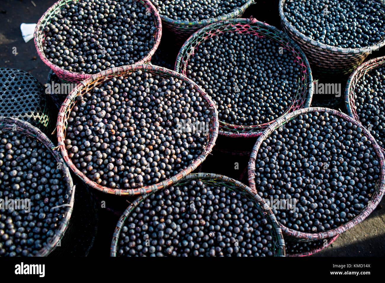 Macapa, Brazil. 17th Nov, 2017. Baskets of Acai berries on sale at the market in Macapa, Brazil, 17 November 2017.Stock Photo