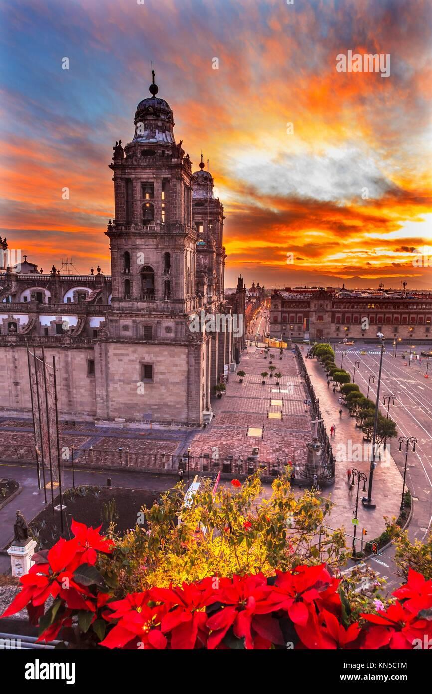 Metropolitan Cathedral Christmas in Zocalo, Center of Mexico City Mexico Sunrise. - Stock Image