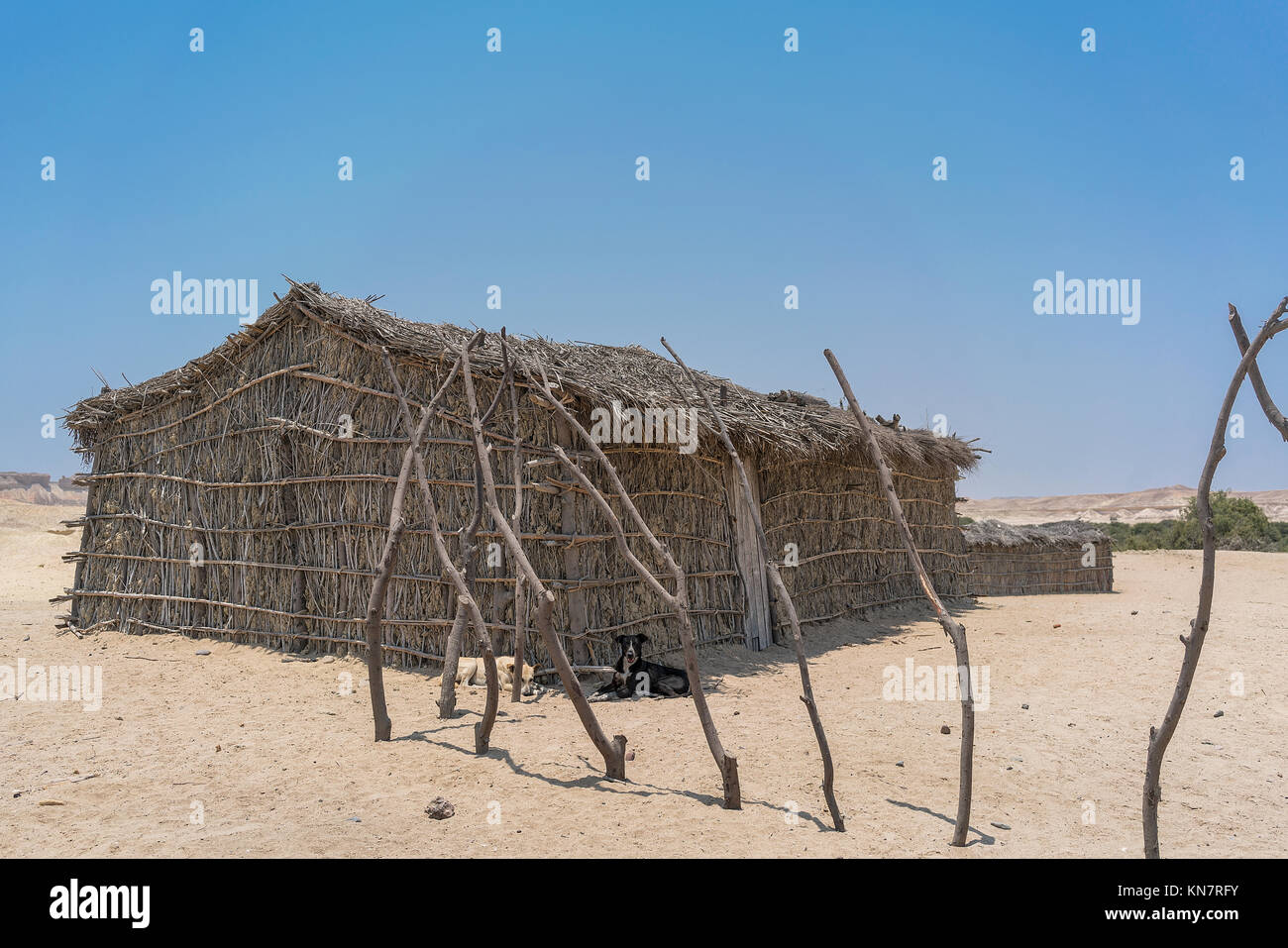 African Country House Made Of Sticks In The Namibe Desert Angola