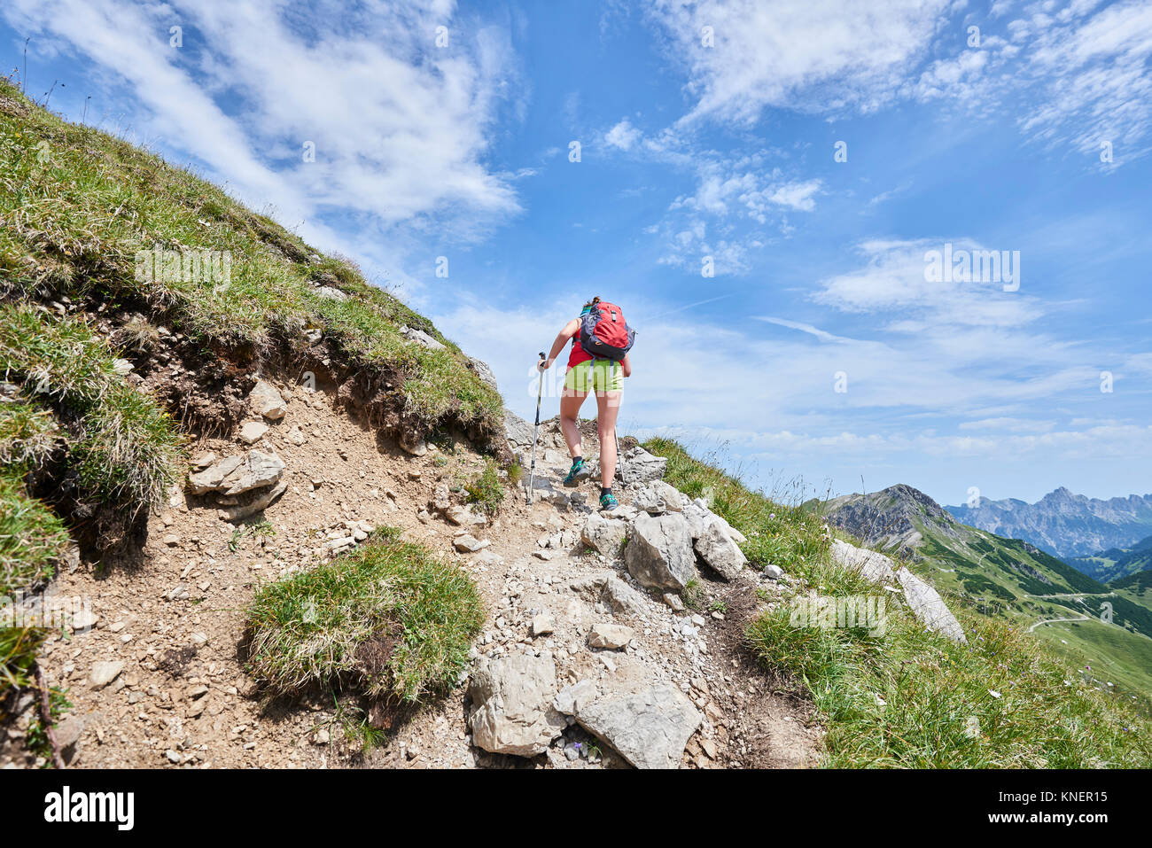 Rear view of female hiker hiking up Tannheim mountains, Tyrol, Austria - Stock Image