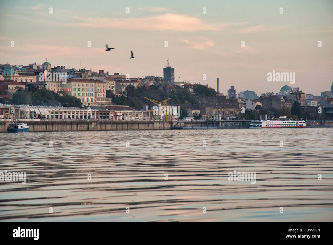 the river Danube with the inner city of Belgrade, Serbia - Stock Image