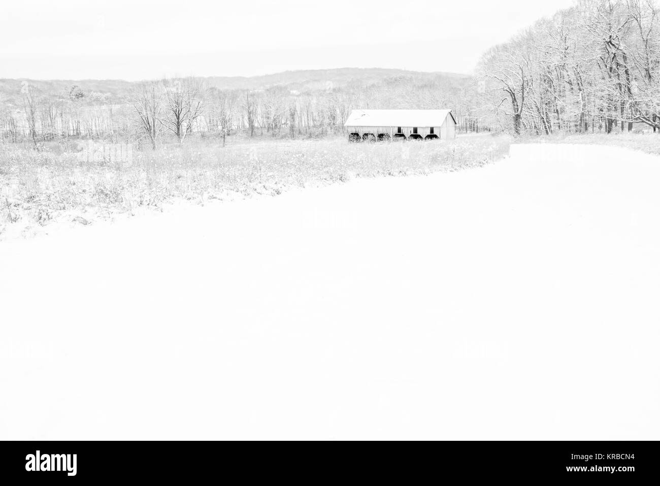 Minimalist black and white old farm barn background. Rural winter scenery - Stock Image