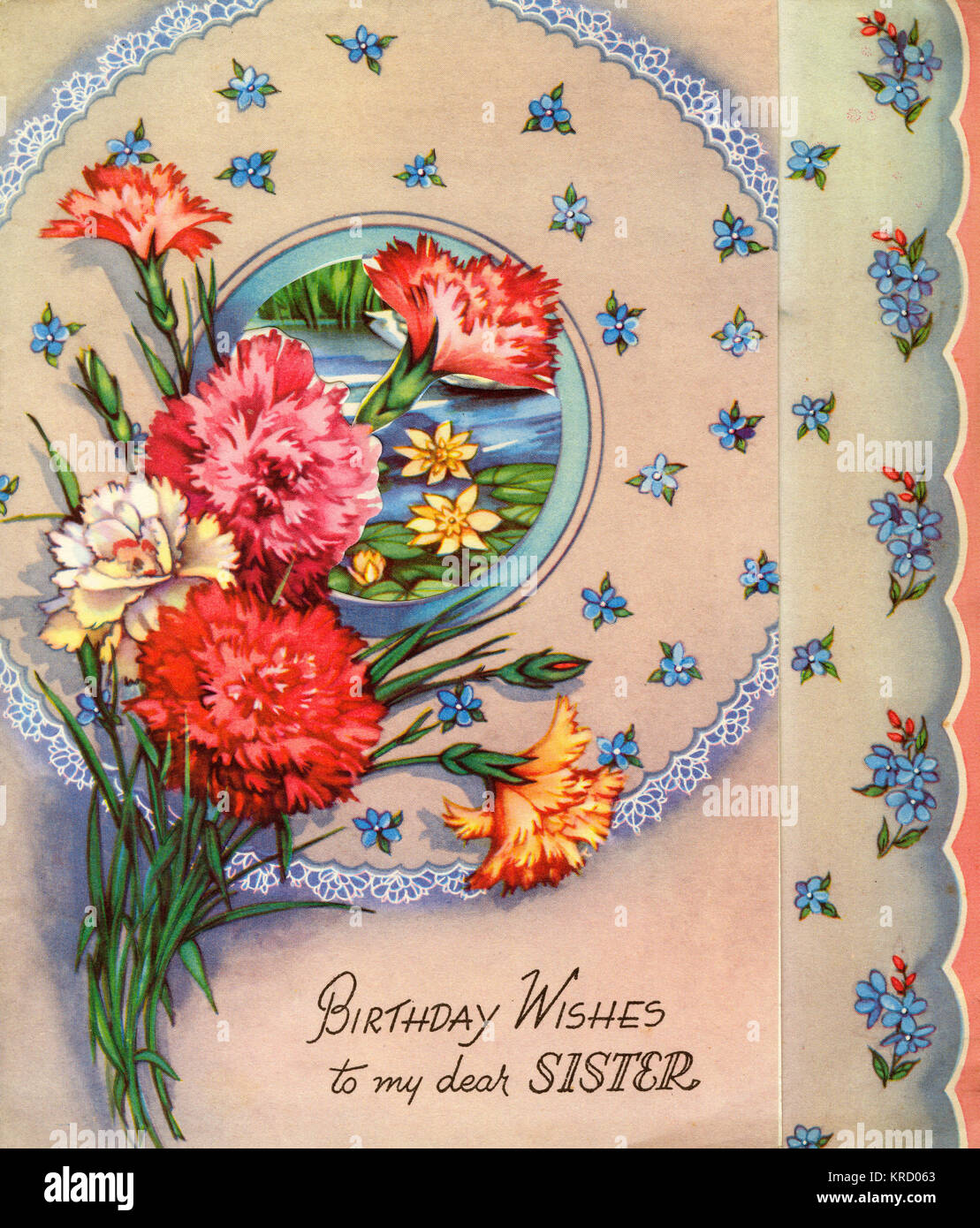 Birthday Wishes to my dear Sister: birthday card with a bunch of carnations, and blue forget-me-nots.   (front, - Stock Image