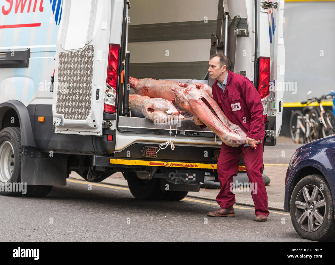 Man unloading dead animal carcasses from a van for a butchers shop in England, UK. Meat delivery. Delivering meat. - Stock Image