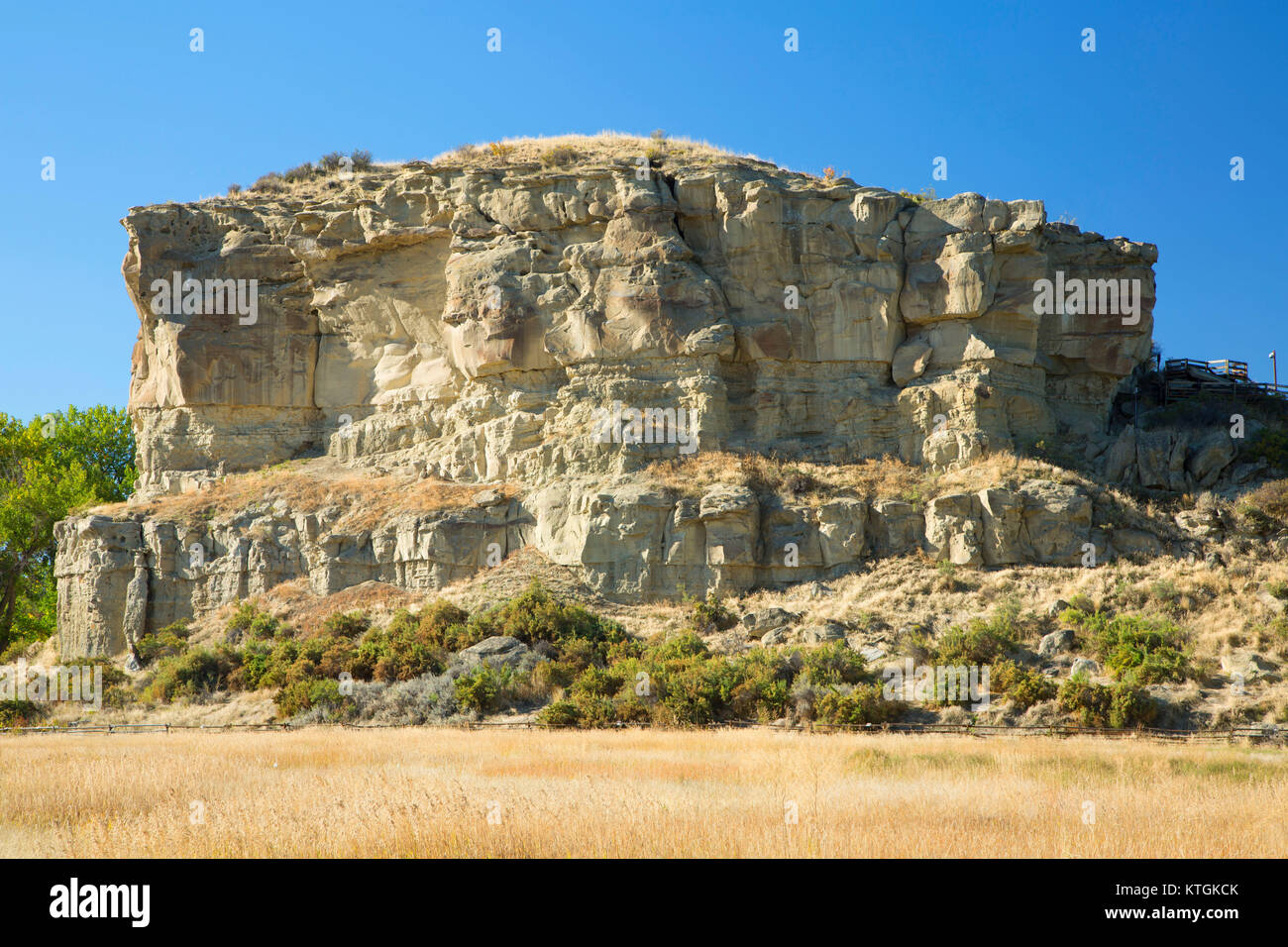 pompeys pillar chatrooms Find the perfect pompeys pillar stock photo huge collection, amazing choice, 100+ million high quality, affordable rf and rm images no need to register, buy now.