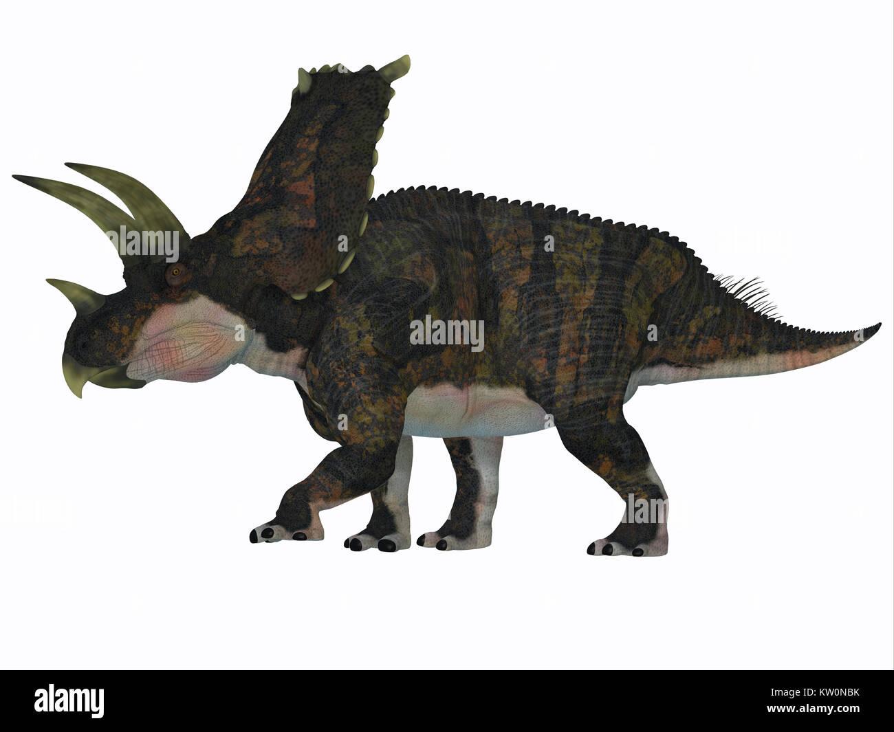 Bravoceratops Dinosaur Side Profile - Bravoceratops was a herbivorous ceratopsian dinosaur that lived in Texas, - Stock Image