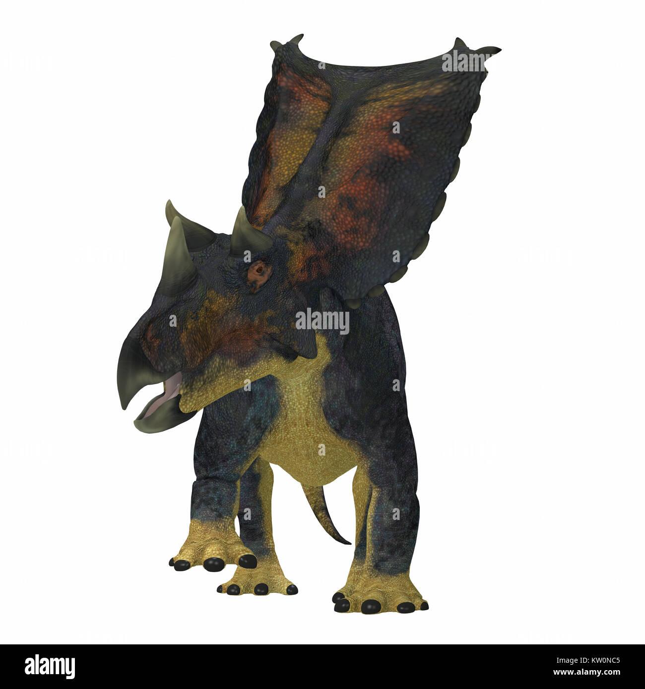 Chasmosaurus Dinosaur on White - Chasmosaurus was a herbivorous ceratopsian dinosaur that lived in Alberta, Canada - Stock Image