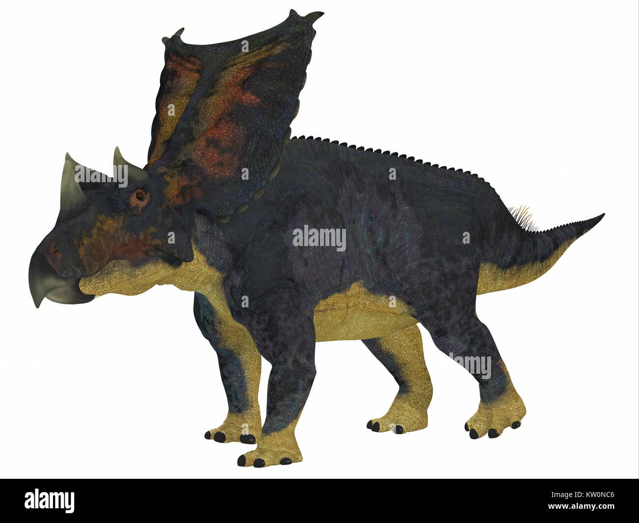 Chasmosaurus Dinosaur Side Profile - Chasmosaurus was a herbivorous ceratopsian dinosaur that lived in Alberta, - Stock Image
