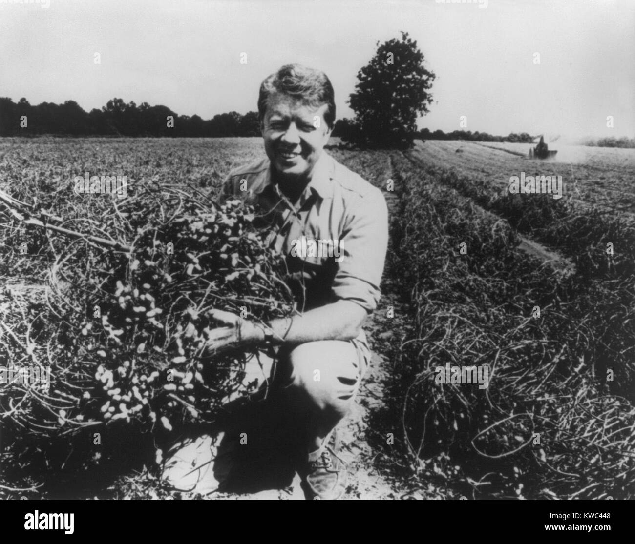 Former Georgia Governor and future President Jimmy Carter on his peanut farm in 1976. He inherited the farm from - Stock Image