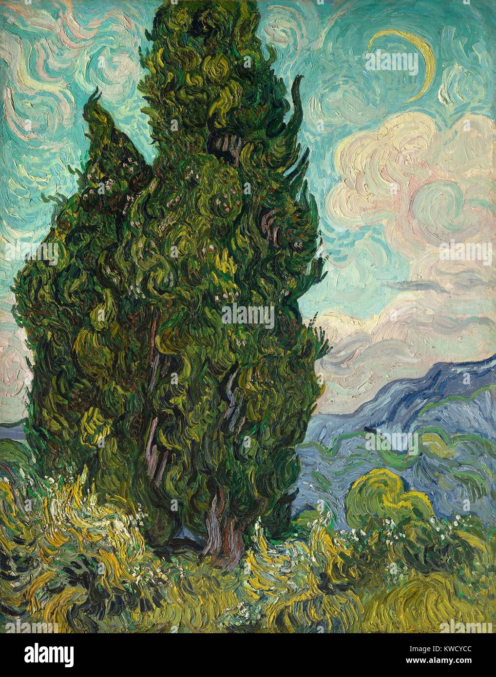Cypresses, by Vincent Van Gogh, 1889, Dutch Post-Impressionist, oil on canvas. Van Gogh described the cypress as - Stock Image